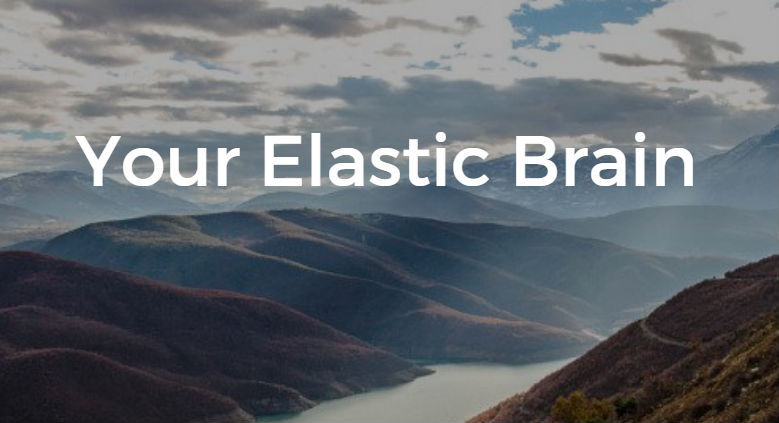 Your Elastic Brain