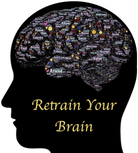 yougetthemoney.com-your-elastic-brain