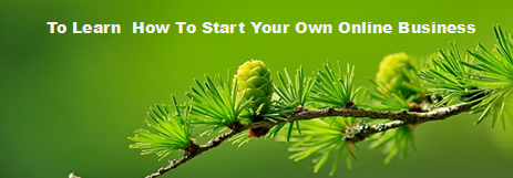 yougetthemoney-com_-to_learn_how_to_start_your_own_online_business