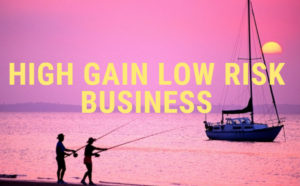High Gain Low Risk Business