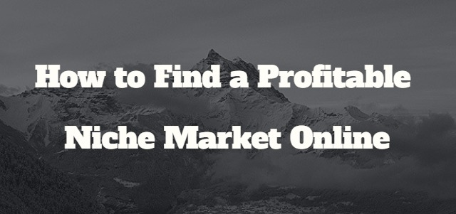 how_to_find_a_profitable_niche_market_online