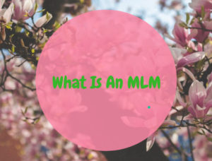 What Is An MLM